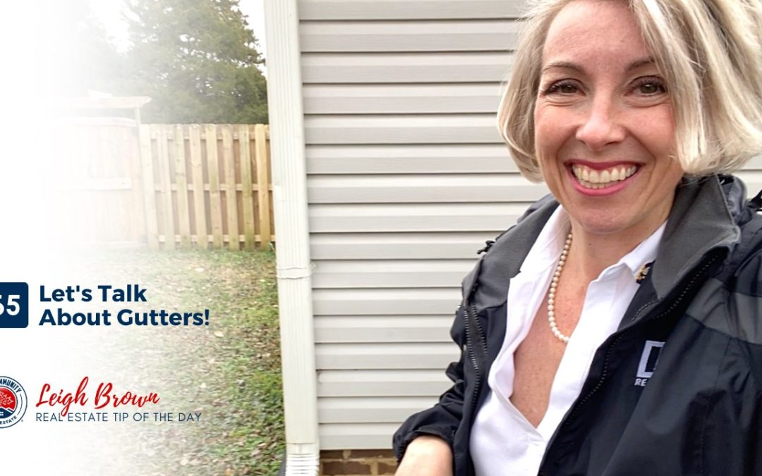 Real Estate Tip of the Day #65- Let's Talk About Gutters!